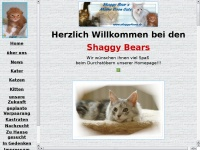 shaggybears.de