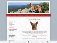 hundeschule-geng.de