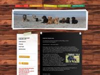 familien-hunde-schule.de