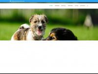 teamtraining-bremen.de