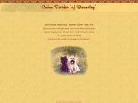 cairn-terrier.net Webseite Vorschau