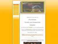 tierhilfe-und-hundeschule-salzgitter.de