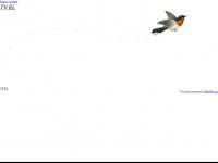 tv-el.de