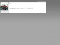 überschlagsimulator.de Webseite Vorschau