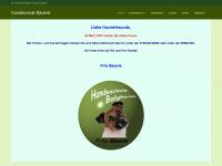 hundeschule-balgheim.com