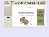 fossilien24.ch