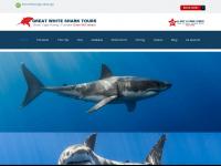 Sharkcagediving.net