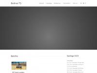 Bt-faustball.de