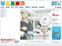 profimess.com