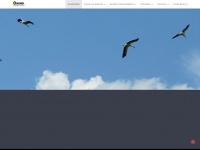 stoerche-aulendorf.de
