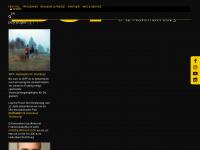 filmfest-braunschweig.de