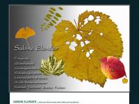 Galerie-elender.de