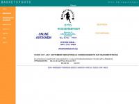 Basketsports.org