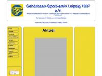 gsv-leipzig1907.de