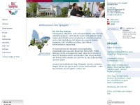 amspiegeln.at Webseite Vorschau