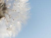 hs-management-training.de