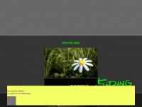 5ding.de Webseite Vorschau