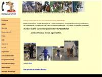 hundeschule-hundetrainer.com