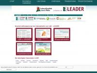 lqn-leader.de Webseite Vorschau