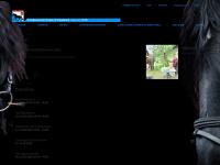 kvkloten.ch Webseite Vorschau