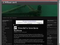 230bar.net Webseite Vorschau