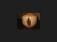 derdrechsler.com