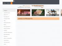1a-handelsagentur.de Webseite Vorschau