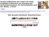 sknnow.ch Webseite Vorschau