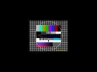 ygm-europe.org Webseite Vorschau