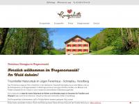 ferienhaus-bregenzerwald.com