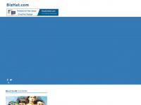 bizhat.com
