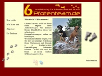 6pfotenteam.de