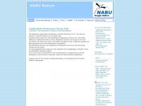 nabubakum.wordpress.com