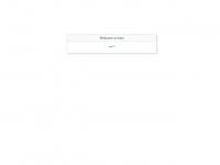 fliegengitter-und-insektenschutz.de Webseite Vorschau