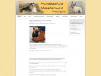 hundeschule-im-westerwald.de