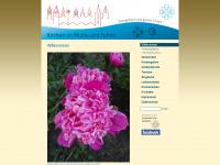 kirchen-mulde-fuhne.de Webseite Vorschau