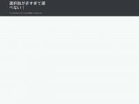 abendkleider-online.com