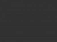 bogner-team.de