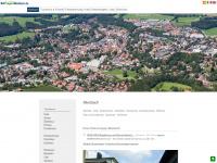 bayregio-miesbach.de