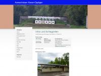 Aareschuetzen-kiesen-oppligen.ch