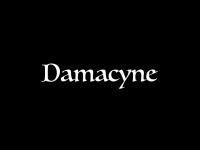 100klan.ch Webseite Vorschau