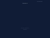 10meilen.ch Webseite Vorschau