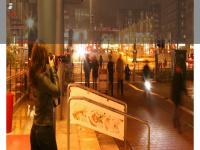 1a-detektive.de Webseite Vorschau