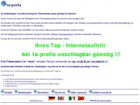 1a-profis.de Webseite Vorschau