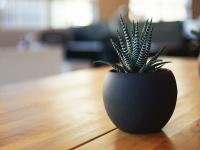 1a-reinigungsberatung.de Webseite Vorschau