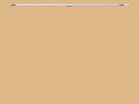 2hon5.ch Webseite Vorschau