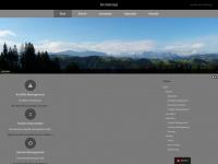 3pro.ch Webseite Vorschau