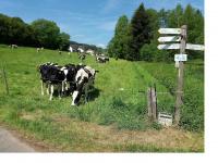 Abi88gsg.de