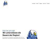 adlermetzg.ch
