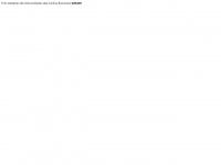aerialpic.ch Webseite Vorschau
